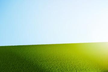 green grass 3d rendering meadow lawn