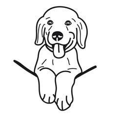 portrait of puppy golden Retriever Dog Breed on White Background,Vector illustration