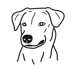 portrait of dog doodle on White Background,Vector illustration
