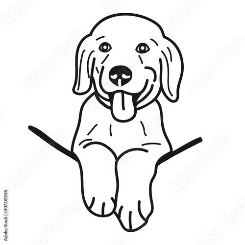 Portrait Of Puppy Golden Retriever Dog Breed On White Background