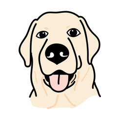 portrait of Labrador Retriever Dog on White Background,Vector illustration