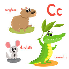 Vector cartoon illustration of wild animals isolated on white