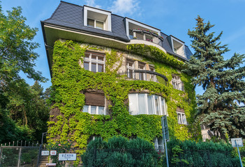 Bratislava, Slovakia - May 24, 2018: A beautiful private house in Bratislava wrapped in leaves