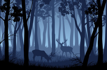 Vector blue night forest landscape with silhouettes of trees and two deers