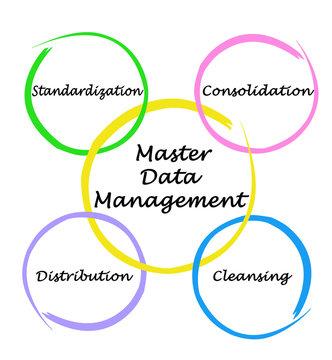 Master Data Management.