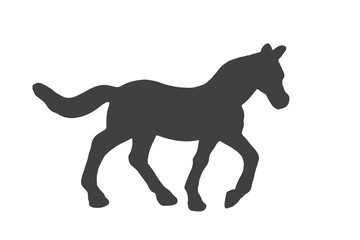 Black silhouette of horse isolated on white background.