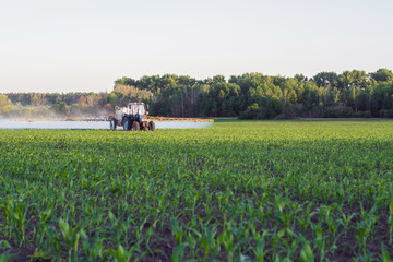 The sprayer travels around the corn between corn in the evening and introduces microfertilizer for spring top dressing