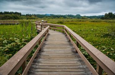 wooden foot bridge over meadow grasslands