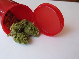 Green crack strain of marijuana in a red prescription bottle