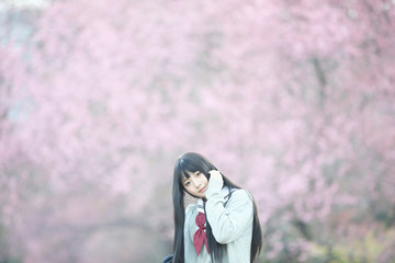 Japanese school girl dress looking sakura flower nature walkway