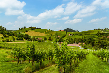Austria Vineyards vine street south Styria travel spot