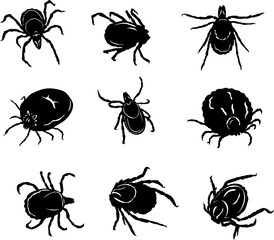 insect images, mite, silhouette, black, illustration