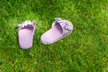 Pink slipper on the green grass in garden