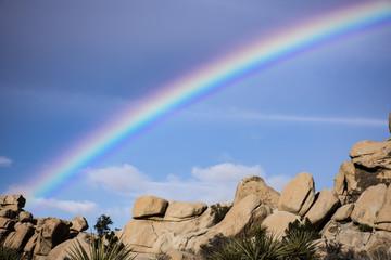 Desert Landscape with Rainbow
