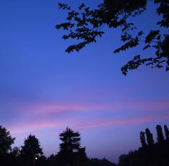 Blue Violet Sky of Summer