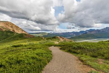 Alaska's Denali National Park Hiking Trail