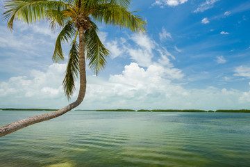 Scenic Florida Keys