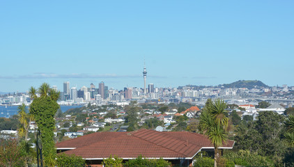 Auckland city skyline panoramic landscape view