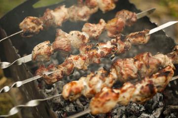 Traditional shish kebab on hot coals