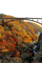 秋の磐梯吾妻スカイライン(福島市)