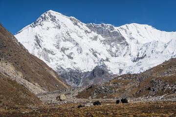 Cho Oyu mountain peak, 6th highest mountain peak in the world, Everest region, Nepal