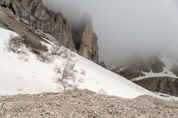 Weekend trip to Mount Fisht. Adygea