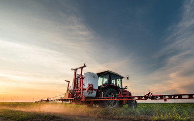 Wall Mural - Tractor spraying pesticides on soybean field with sprayer at spring