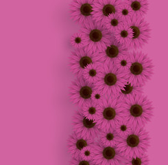 Vector illustration of sunflowers. 3D floral background. Spring print.