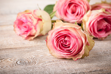 Fresh pink roses on wooden table
