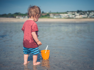 Toddler playing on the beach
