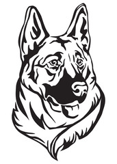 Decorative portrait of German shepherd vector illustration