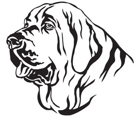 Decorative portrait of Spanish Mastiff vector illustration
