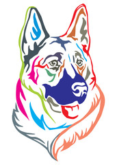 Colorful decorative portrait of German shepherd vector illustration