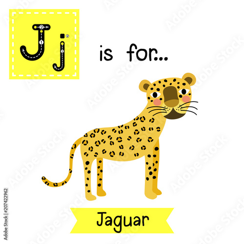 Cute Children Zoo Alphabet J Letter Tracing Of Jaguar For Kids Learning  English Vocabulary. Vector