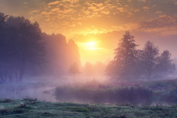 Landscape of amazing summer nature in early foggy morning on sunrise. Trees on river bank in mist on warm sunlight background. Perfect scene of Wild nature at dawn. Colorful sky over forest and river.