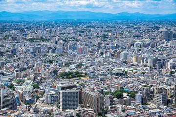 東京 住宅が密集する都市風景