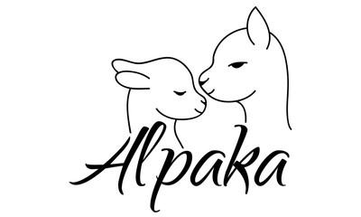 Alpaca Alpaka Logo Design