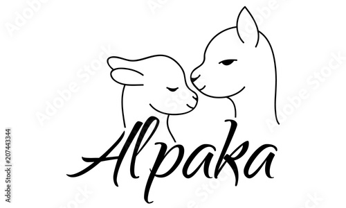 """alpaca alpaka logo design"" stock image and royaltyfree"