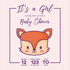 Its a girl-Baby shower invitation with cute fox icon over purple background, colorful design. vector illustration