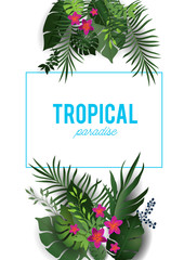 Tropical nature isolated