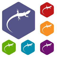 Lizard icons set rhombus in different colors isolated on white background