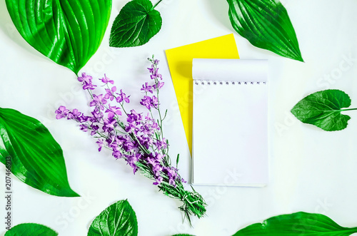 diary for records  empty template  green leaves  purple flowers