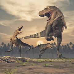 Three dinosaurs - tyrannosaurus rex.