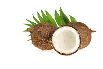 Coconut. whole coconuts and one in a slice and a palm leaf isolated on white background.