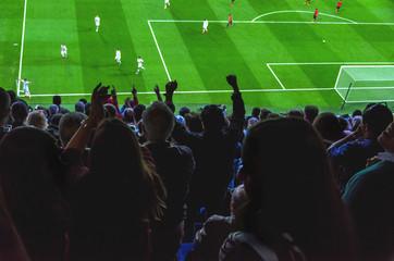 football or soccer  goal celebration