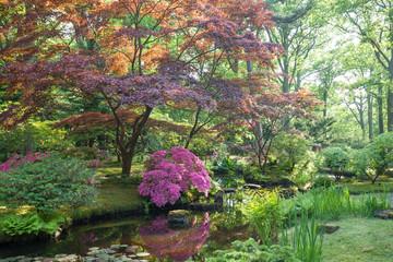 Japanese garden (Clingendaen) is spectacular public park in The Hague city