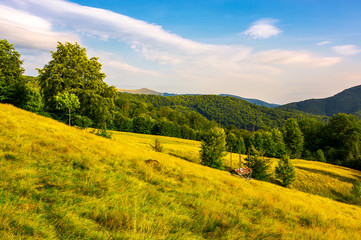 hayshed on a meadow among the beech forest. beautiful evening scenery of Carpathian mountains Ukraine. Svydovets mountain ridge in the far distance under the blue summer sky with some fluffy clouds