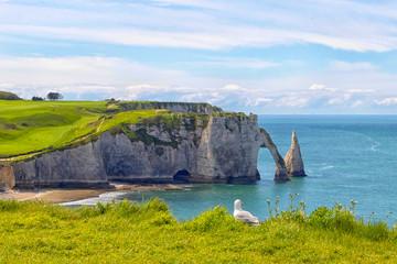 Etretat - Normandie - Felsen mit Möve Fototapete