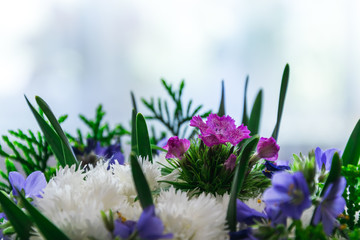 colored flowers and white flowers with green leaves