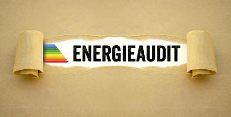 Tafel mit Bauplan und Haus mit Paragraph Recht Energieaudit Energieeffizienz